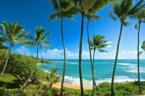 Kauai's Coconut Coast