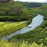 Wailua River & Fern Grotto Tour